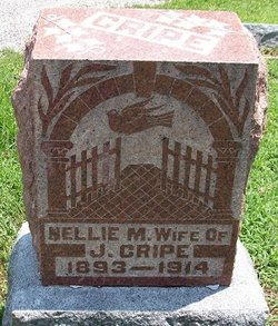 Nellie Mary <i>Hanley</i> Cripe