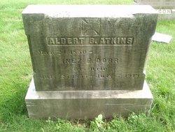 Albert Stanley Atkins