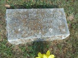 Samuel E Angus