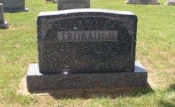 Dennis M Trobaugh