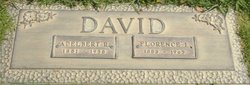 Adelbert Raymon David