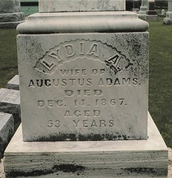 Lydia A <i>Phelps</i> Adams
