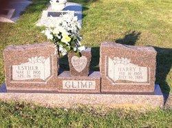 Harry E. Glimp