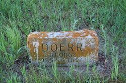 George Doerr