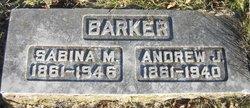 Andrew Johnson Barker