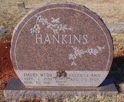 Patricia Ann Hankins