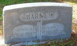 Mary Joseph Sarah E. Aunt Sarah Barnes