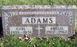 Amelia Mary <i>Schweiger</i> Adams