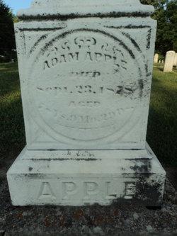 Adam Apple