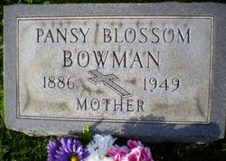 Pansy Blossom <i>Davidson</i> Bowman