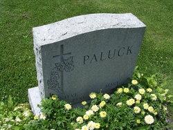 Steve Paluck