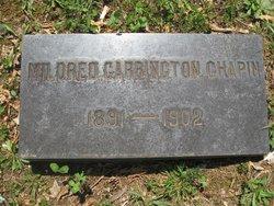 Mildred Carrington Chapin