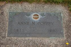 Anne N Coffey