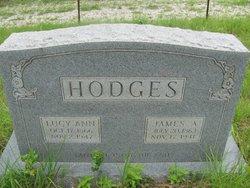 Lucy Ann <i>Racer</i> Hodges