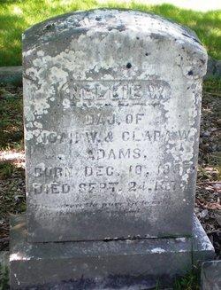 Nellie W. Adams