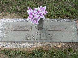 John Miles Bailey