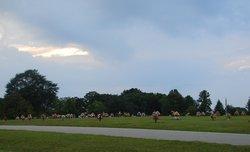 Liberty Memorial Gardens