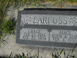 Alice Barfuss