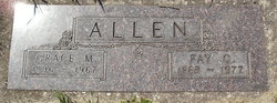 Faye Cooper Allen
