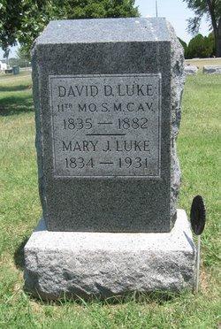 David D. Luke