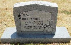 Joel Lynn Anderson