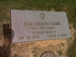 Ray Edison Dom