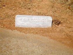 Sarah Ann <i>Little</i> Dodsworth