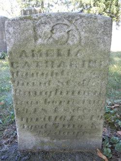 Amelia Catharine Baughman