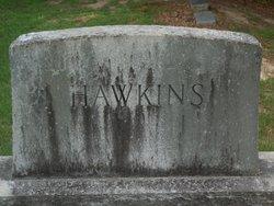 Howard L Hawkins