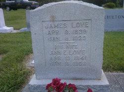 Ann E Love
