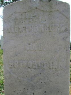 Alexander Thorburn