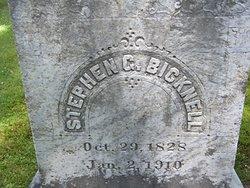 Stephen G Bicknell