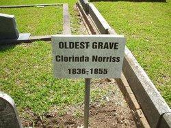 Clorinda Norriss