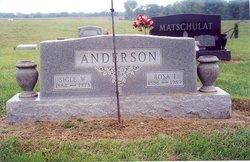 Rosa Irene <i>Rice</i> Anderson