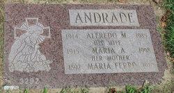Alfredo M Andrade