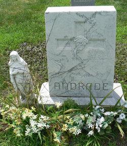 John J. Andrade