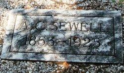 Aaron C Sewell