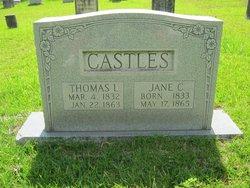 Jane Catherine <i>Whitesides</i> Castles