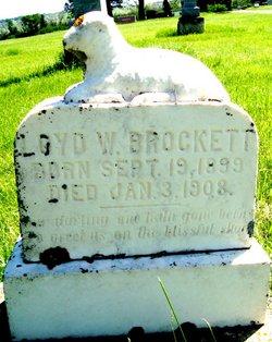 Lloyd W Brockett