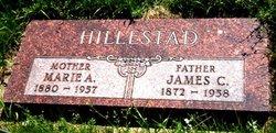 James C Hillestad