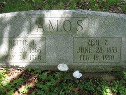 Anzonettie Nettie <i>Ireland</i> Amos