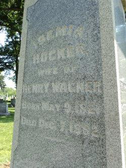 Isemia <i>Hocker</i> Wagner