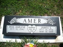 James L. Amer