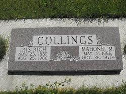 Iris <i>Rich</i> Collings