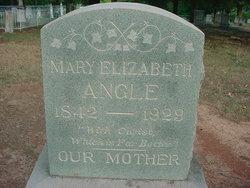 Mary Elizabeth Angle