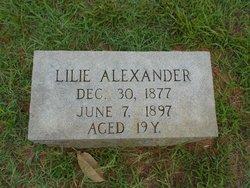 Lilie Alexander