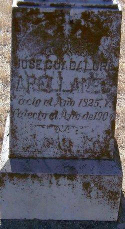 Jose Guadalupe Arellanes