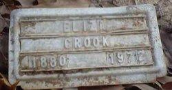 Eliza Crook
