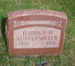 Harold H Austermiller