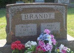 Harry F. Brandt